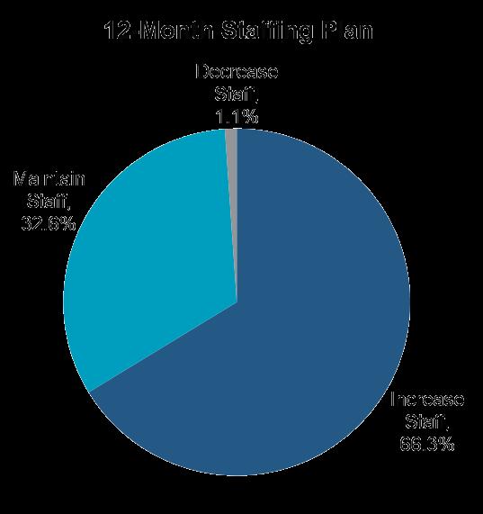 Insurance Industry Staffing Statistics