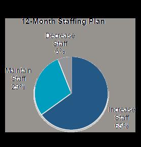 Labor Study Staffing Chart