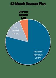 12-Month Revenue Plan