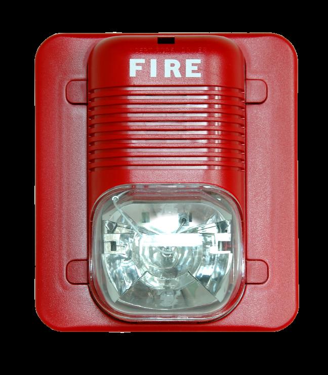 Insurance Recruitment Fire Drill
