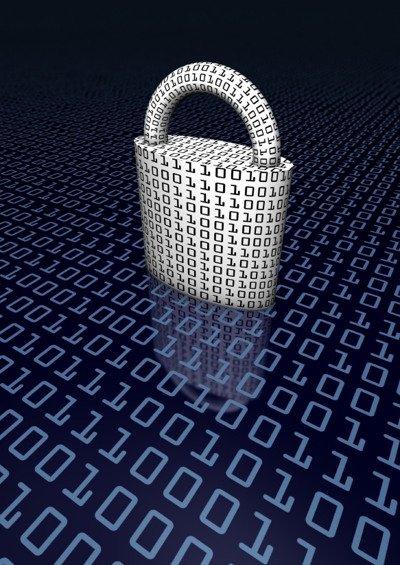 The growth of cyber security risks.
