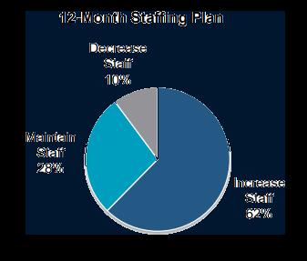Staffing Plan.png