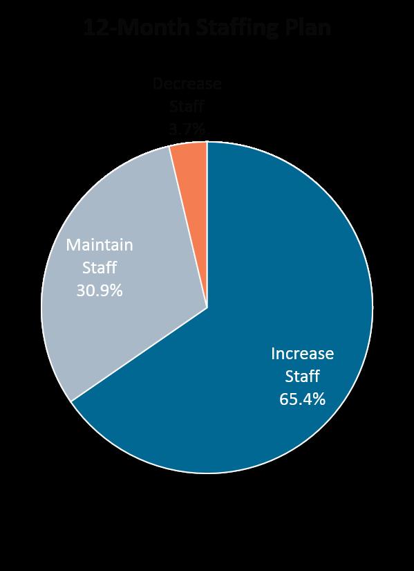 12-Month Staffing Plan